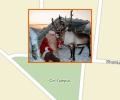 Куда отправить ребенка на зимние каникулы в Астане?
