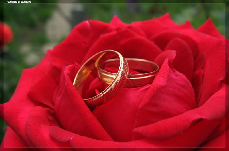 Где находятся брачные агентства в Астане?